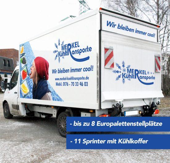 fuhrpark_sprinter